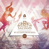 Pure Salinas, Vol. 6 (Compiled by DJ Zappi) by Various Artists