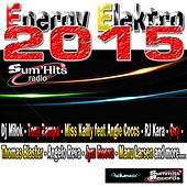 Energy Elektro 2015, Vol. 4 (EDM selection by Sum'Hits Radio) by Various Artists