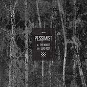 The Woods / Leadfoot by Pessimist