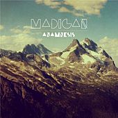 Anamnesis by Madigan