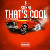 That's Cool (feat. Tru Money) by Sonni