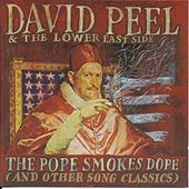The Pope Smokes Dope by David Peel and The Lower East Side