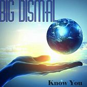 Know You by Big Dismal