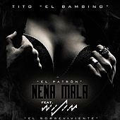 Nena Mala (feat. Wisin) by Tito El Bambino