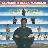 Ezulwini Siyakhona by Ladysmith Black Mambazo
