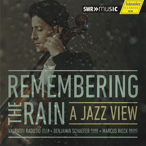 Remembering the Rain by Valentin Radutiu