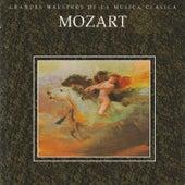 Grandes Maestros de la Musica Clasica - Mozart by Various Artists