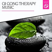 Qi Gong Therapy Music by Various Artists