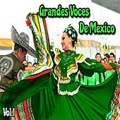 Grandes Voces de México, Vol. 1 by Various Artists