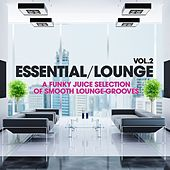 Essential Lounge, Vol. 2 (A Funky Juice Selection of Smooth Lounge-Grooves!) by Various Artists
