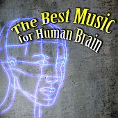The Best Music for Human Brain – Classical Music for Your Mind, Exam Study Music, Deep Concentration, Mindfulness, Music for Studying by Various Artists