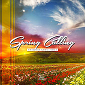 Spring Calling - Chillout Gems Vol.1 by Various Artists