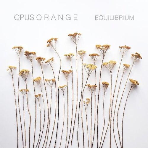 Equilibrium by Opus Orange