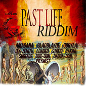 Past Life Riddim by Various Artists