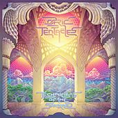 Technicians of the Sacred by Ozric Tentacles