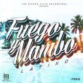 Fuego y Mambo Latino by Omega