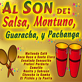 Al Son De: Salsa, Son, Bolero, Guaracha, Y Pachanga by Various Artists