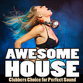 Awesome House, Vol. 1 - Clubbers Choice for Perfect Sound by Various Artists