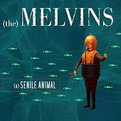 A Senile Animal by Melvins