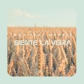 Siente la Vibra by Tamy