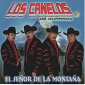 El Senor de la Montana by Los Canelos De Durango