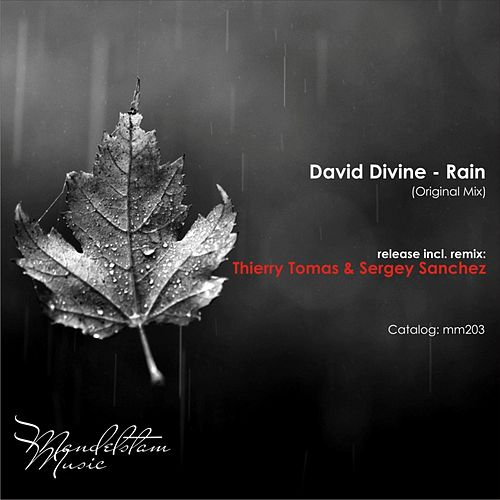Rain by David Divine