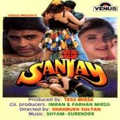 Sanjay (Original Motion Picture Soundtrack) by Kavita Krishnamurthy