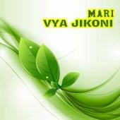 Vya Jikoni by Mari