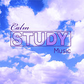 Calm Study Music by Various Artists