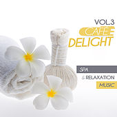 Cafe Delight, Vol. 3 - Spa and Relaxation Music by Various Artists