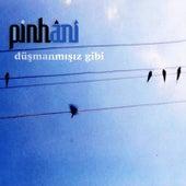 Düşmanmışız Gibi by Pinhani