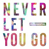 Never Let You Go (feat. Foy Vance) by Rudimental