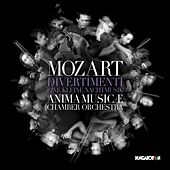 Mozart: Divertimentos, K. 136-138 & Serenade No. 13 in G Major, K. 525
