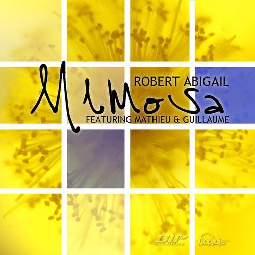 Mimosa by Robert Abigail