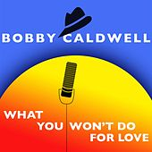 What You Won't Do For Love (As Featured in the 2014 Mitsubishi Outlander Sport Commercial) by Bobby Caldwell