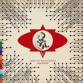 Anatomic von The Afro Celt Sound System
