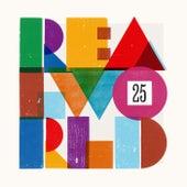 Real World 25 von Various Artists