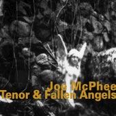 Tenor & Fallen Angels by Joe McPhee