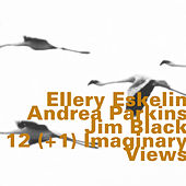12(+1) Imaginary Views by Ellery Eskelin