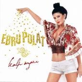 Kalp Ayazı by Ebru Polat