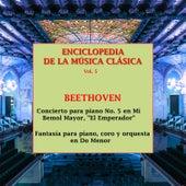 Enciclopedia de la Música Clásica Vol. 5 by Peter Toperczer