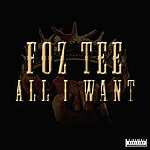 All I Want by Foz Tee