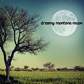 Dreamy Montana Moon by Various Artists