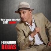 No Se Puede Controlar A Un Amor by Fernando Rojas