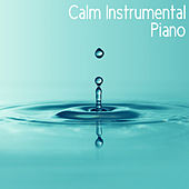 Calm Instrumental Piano by Various Artists