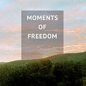 Moments of Freedom: Piano and Relaxation by Various Artists