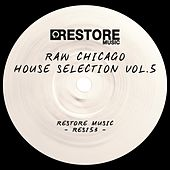 Raw Chicago House Selection, Vol. 5 by Various Artists