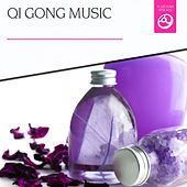 Qi Gong Music by Various Artists