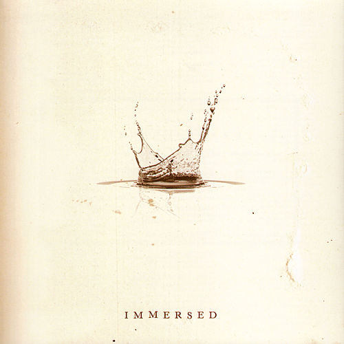 Immersed by Various Artists