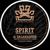 Salamander / Holding Back by Spirit